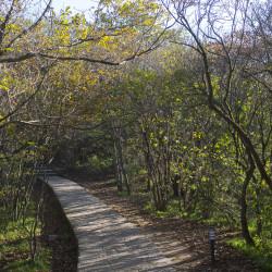 Huangshan Mountains Hiking & Wanderwege ©PhotoTravelNomads.com