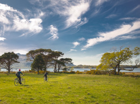 Irland Sehenswürdigkeiten: Killarney National Park - Irland Reisebeircht © PhotoTravelNomads.com