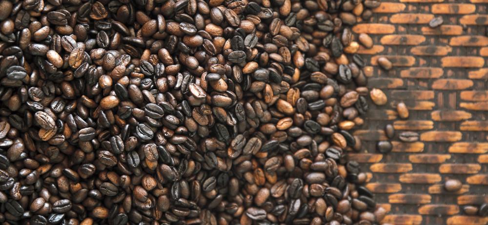 Laos Reiseblog: Koffies Coffe Workshop in Paksong (Bolaven Plateau) © PhotoTravelNomads.com