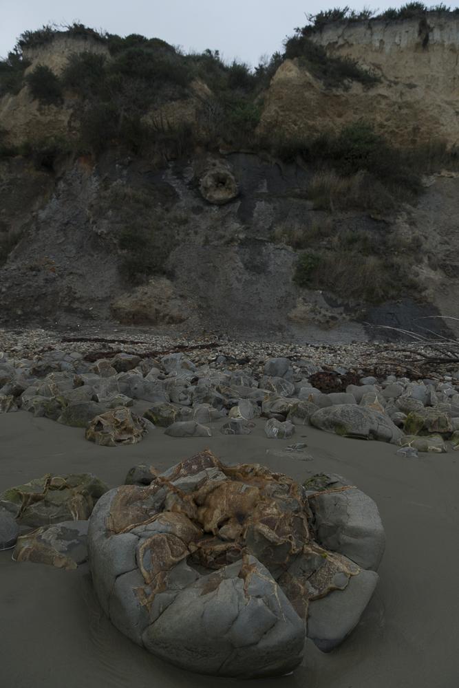 Moeraki Boulders Fakten © PhotoTravelNomads
