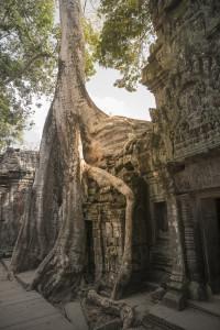 Siem Reap - Tempel bei Angkor Wat © PhotoTravelNomads.com