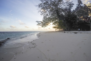 Strand auf Sipadan Island