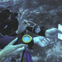 Sipadan Island Deep Dive © PhotoTravelNomads.com