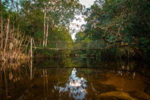 Der Weg zum Suoi Tranh Wasserfall in Phu Quoc ©PhotoTravelNomads.com