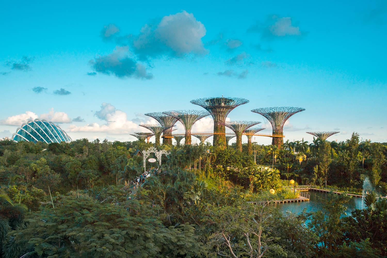 Die riesigen Bäume in Singapur: Gardens by the Bay