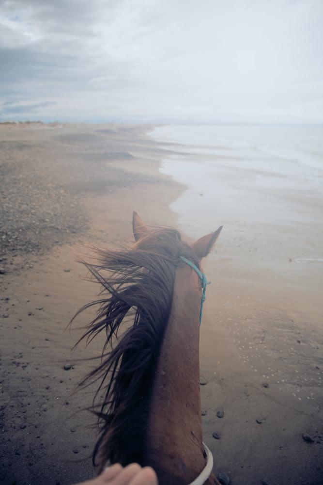 Reiten am Strand von Clive