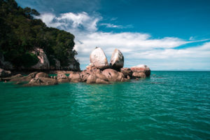 Sailing Adventure Abel Tasman